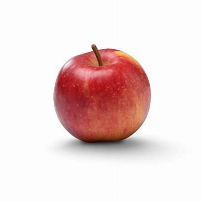 Smitten Apples Apple Yes
