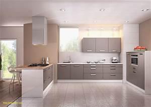 Modele De Cuisine Moderne : modele de deco cuisine ~ Melissatoandfro.com Idées de Décoration