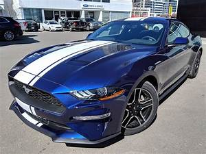 2019 Ford Mustang Gt Blue
