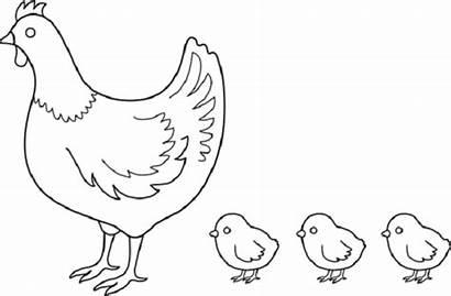Coloring Hen Drawing Colouring Chicks Gacha Hens