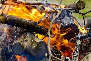 Incendios forestales: causas y prevención El Técnico Ambiental