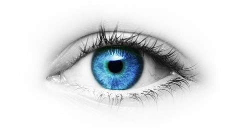 how to determine eye color eye color may determine susceptibility to disease