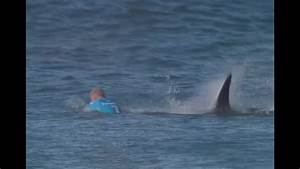 Jaw Dropping Surfer Fights Off Shark Attack Live On Tv In