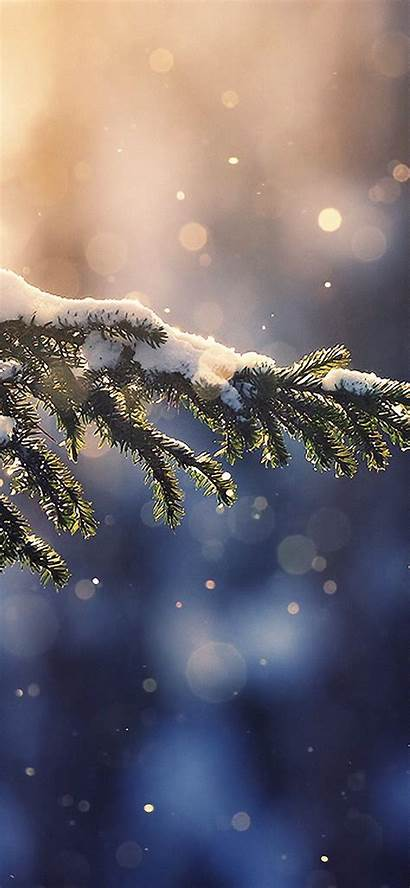 Iphone Winter Wallpapers Nature 4k Christmas Background