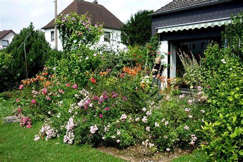 Der Chemische Garten by Prof Blumes Tipp Des Monats