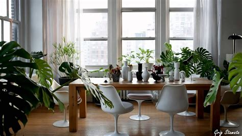 Plants And Greenery In Your Interior Design