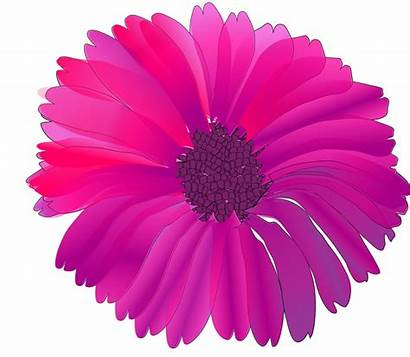 Flowers Clipart Fuschia Flower Pink Floral Clip