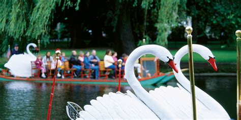 Swan Boats Closed by Swan Boats Boston Rides Included On Go Boston 174 Card
