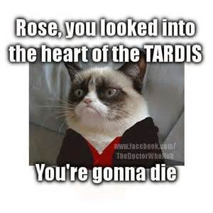 cat doctor grumpy cat doctor who doctor who dr who