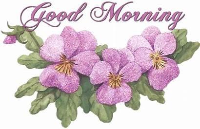 Morning Flowers Lovely Imazes Wishgoodmorning Ni