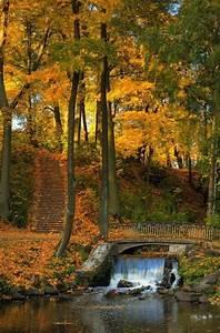 Pin, On, Riga, Latvia, My, Birthplace