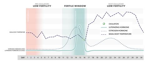 lh hormone mira fertility ovulation chart surge levels estrogen level hormones menstrual fertile data luteinizing temperature body basal tracking days