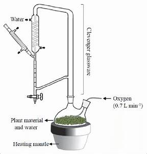 Apparatus Used For The Essential Oil Extraction With