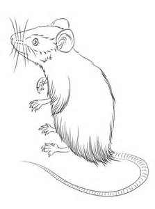 mouse standing  coloring page  printable coloring pages