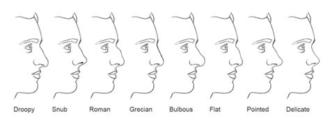 Drawing The Nose