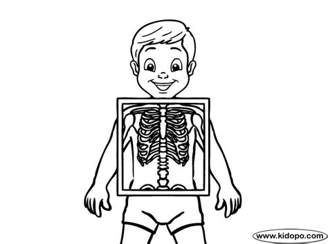 Hand X Ray Colouring Pages