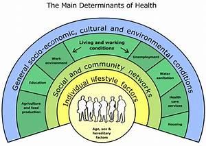 Gcse H U0026sc Unit 3 Promoting Health And Wellbeing  U2013 Health