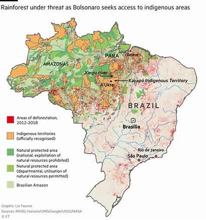 Rainforest Brazil Map Area Indigenous Bolsonaro Deforestation