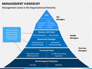 management hierarchy powerpoint template sketchbubble