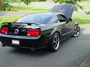 FS:Black 05 Mustang GT w/Saleen S/C - The Mustang Source - Ford Mustang Forums