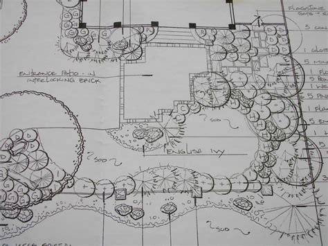how to draw landscape plans the cheeky designer a landscape plan