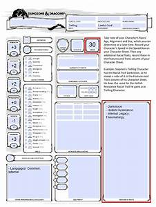 D U0026d 5e Character Creation Instructions By The High