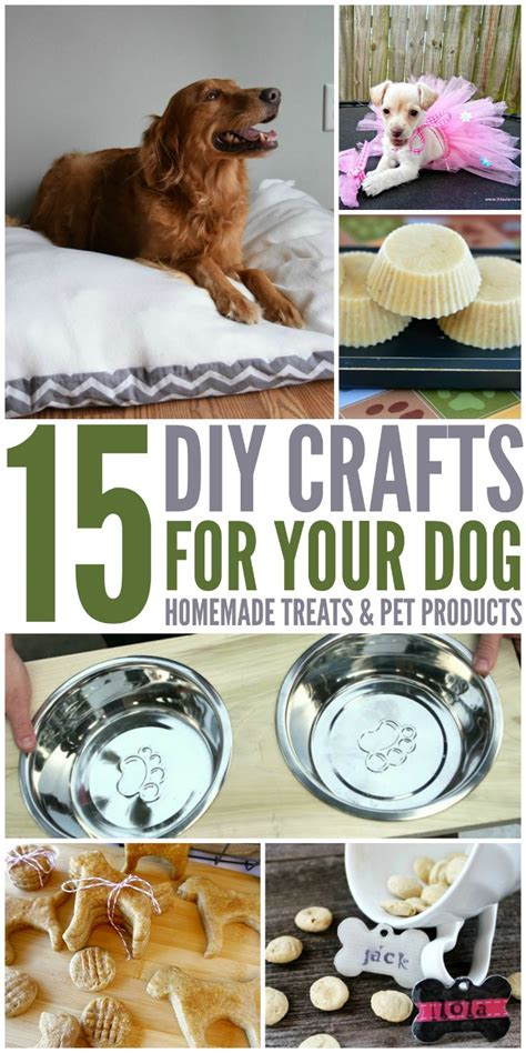 15 Diy Crafts For Your Dog  Budget Earth