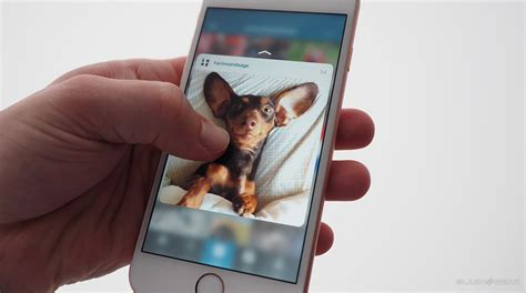 iphone 6s on gold 3d touch 12mp