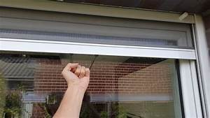 Fliegengitter Rollo Fenster : fliegengitter fenster integrierter insektenschutz als rollo und schiebet r im haus ~ A.2002-acura-tl-radio.info Haus und Dekorationen
