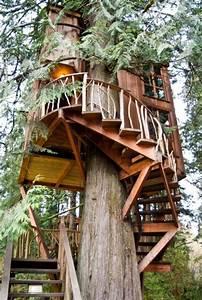 Cabane Dans Les Arbres Construction : les cabanes dans les arbres architecture fantastique au coeur de la for t ~ Mglfilm.com Idées de Décoration