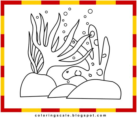 seaweed color free coloring pages of some seaweed