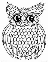 Owl Coloring Printable Pages Bird Adults Night Cartoon Animals Source Visit Site sketch template