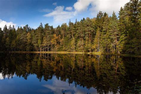 Salņu ezers, Talsu pauguraines dabas parks | Natural landmarks, Park, Landmarks