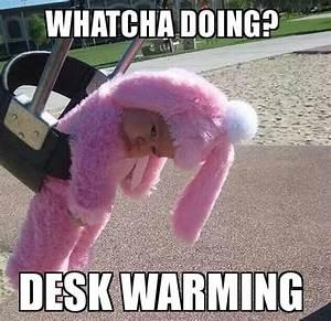 #whatchadoing #deskwarming #sadbunny #bunny #pinkbunny # ...