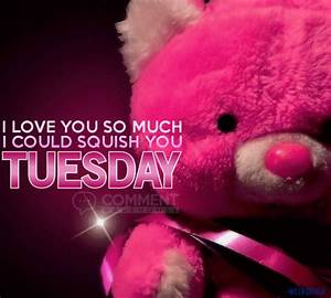 I love you so much I could squish you Tuesday - Comments ...