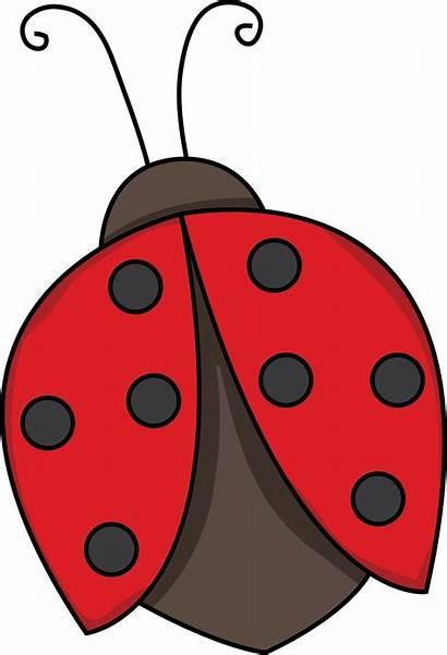 Clipart Bug Lady Library Clip Ladybug