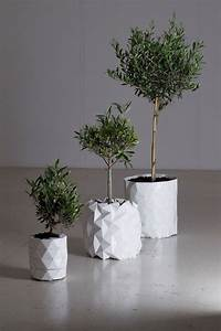 unique and modern planter that will grow with the plant With pot de fleur d interieur