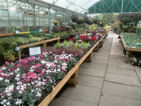 twinlocks garden centre home lifestyle squires ideas brigg