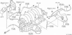 Infiniti M45 Evaporator Canister Vent Control Valve