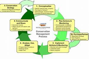 Conservation Management Processes