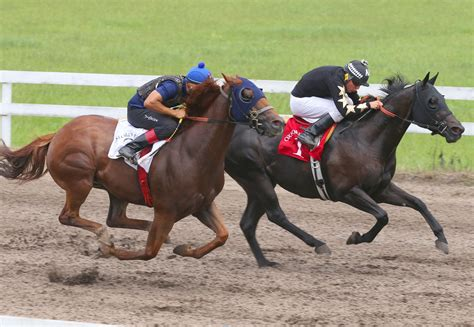 Quarter horse racing underway in south Marion County ...