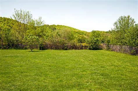 Wann Vertikutiert Rasen by Rasen Vertikutieren Wann Ist Die Beste Zeit Wann