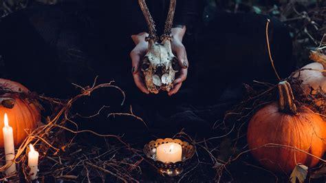 nw halloween pumpkin skull dark nature wallpaper