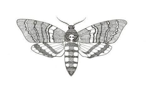 Papillon De Nuit Tatouage