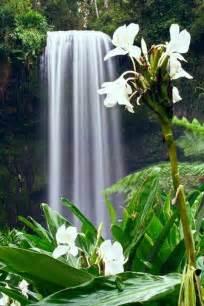 Beautiful Hawaiian Hawaii Waterfalls