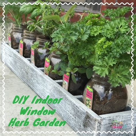 Indoor Window Herb Garden by Diy Indoor Window Herb Garden Just Plum