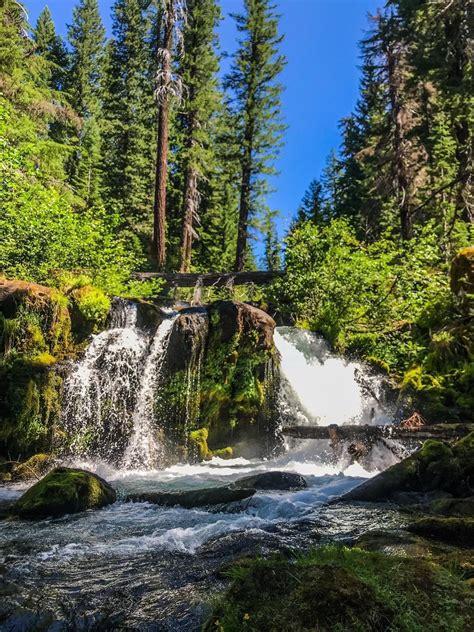 muir creek falls oregon alltrails