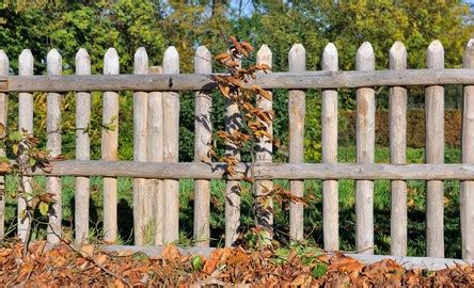 cl 244 ture de jardin en bois habitatpresto