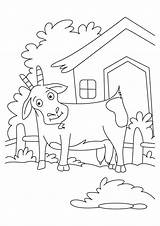 Coloring Billy Gruff Goats Three Pages Troll Goat Popular Clip Library Clipart Coloringhome sketch template