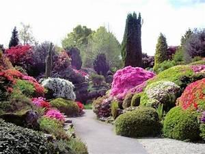 Le plus beau paysage fleuri! Voyez les meilleures images